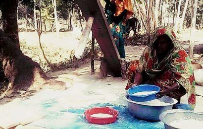 লালপুরে বিলুপ্তপ্রায় বাংলার 'ঢেঁকি'